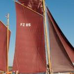 11. Zingster Zeesbootregatta